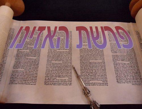 Shabbat Parshat Ha'azinu 5781